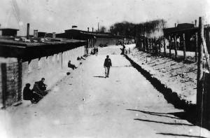 Buchenwald-J-Rouard-04